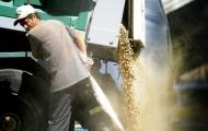 Portal 180 - La soja provocó 25% de aumento en exportaciones de abril