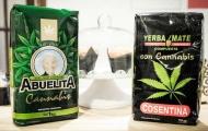 Portal 180 - MSP recomienda no consumir yerba con cannabis