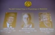 Portal 180 - Nobel de Medicina a tres estadounidenses expertos en reloj biológico
