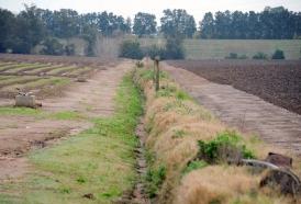 Portal 180 - Endeudamiento del agro alcanza al 75% del producto del sector