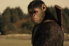 Portal 180 - Los efectos visuales ganan la guerra en el Planeta de los simios
