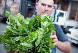 Portal 180 - Intendencia volverá a informar de la presencia de plaguicidas en frutas y hortalizas