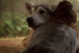 Portal 180 - Tyrion Lannister pide a los fans no comprar huskies