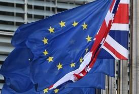 """Portal 180 - Anular el Brexit tendría un impacto económico muy """"positivo"""", según la OCDE"""