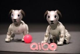 Portal 180 - Sony presentó la nueva versión del perro robot Aibo