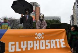 Portal 180 - Europa autoriza otros cinco años el uso del glifosato