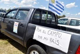 """Portal 180 - Movimiento """"Un solo Uruguay"""" se desmarcó de quienes discutieron con Vázquez"""