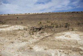 Portal 180 - El cambio climático causará una catástrofe migratoria, advierte el Banco Mundial