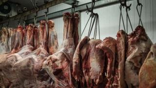 TLC UE-Mercosur genera expectativas mesuradas en productores de carne | 180