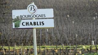 Las vendimias de 2017 en Francia serán gravemente afectadas por el clima | 180
