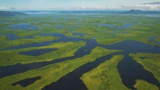 El Pantanal, el mayor humedal del planeta | 180