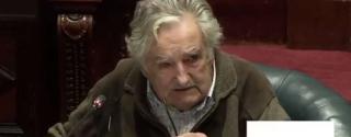 Portal 180 - La defensa de Mujica sobre la compra de su chacra, Radio Panamericana y Mate Amargo