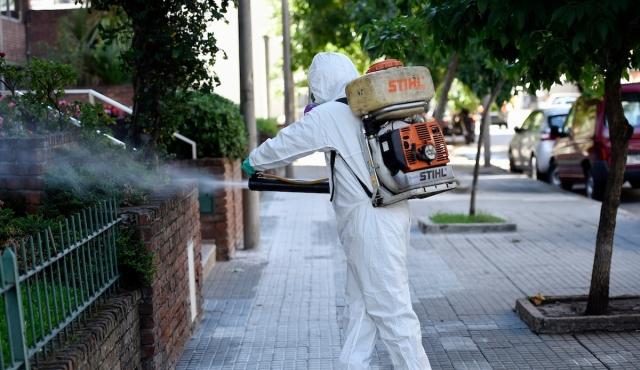 """""""Comienzan los meses con mayor presencia del mosquito"""""""
