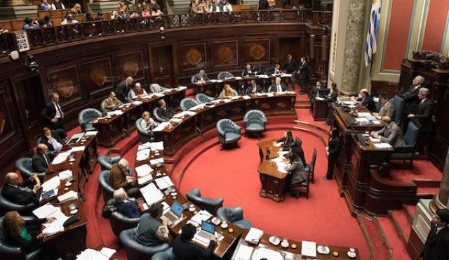 Senado aprobó ley de cuota femenina por unanimidad pero discutió sobre el poder