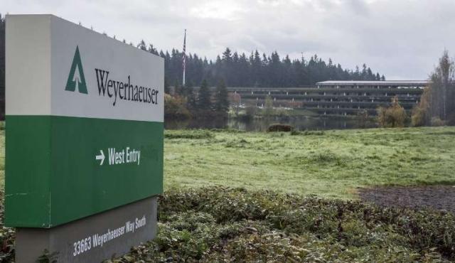 Forestal Weyerhaeuser vende sus activos en el país por 402,5 millones de dólares