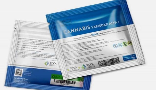 El 19 de julio comienza la venta de marihuana en farmacias