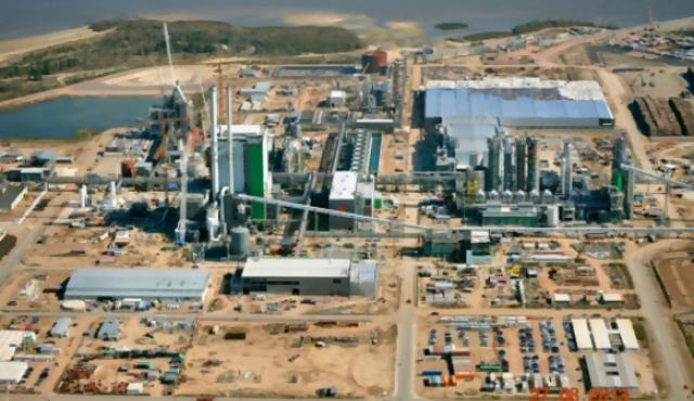 Uruguay tendrá una tercera planta de celulosa