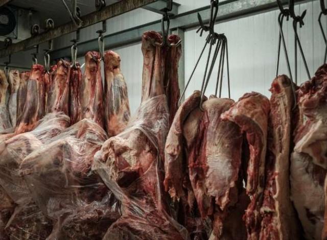 Portal 180 - TLC UE-Mercosur genera expectativas mesuradas en productores de carne