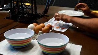 Piques sobre refrigeración de alimentos - Audios - 4 - DelSol 99.5 FM