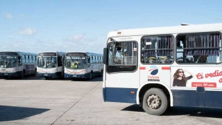 """""""Los datos del transporte son de la intendencia y no de las empresas"""" - Entrevistas - 1 - DelSol 99.5 FM"""