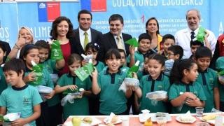 """El cambio """"espectacular"""" de los niños chilenos en la alimentación - Entrevistas - 1 - DelSol 99.5 FM"""