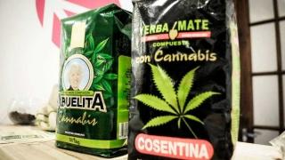 Qué falta para vender yerba con cannabis - Entrevistas - 1 - DelSol 99.5 FM