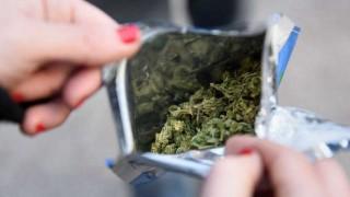 Marihuana: regulación es más efectiva que la incautación - Entrevistas - 1 - DelSol 99.5 FM