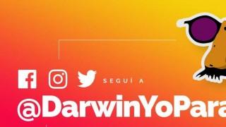 Darwin lanzó sus redes sociales oficiales, con una aclaración - NTN Concentrado - DelSol 99.5 FM