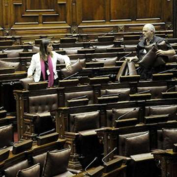 ¿Los parlamentarios pueden y deben trabajar más?