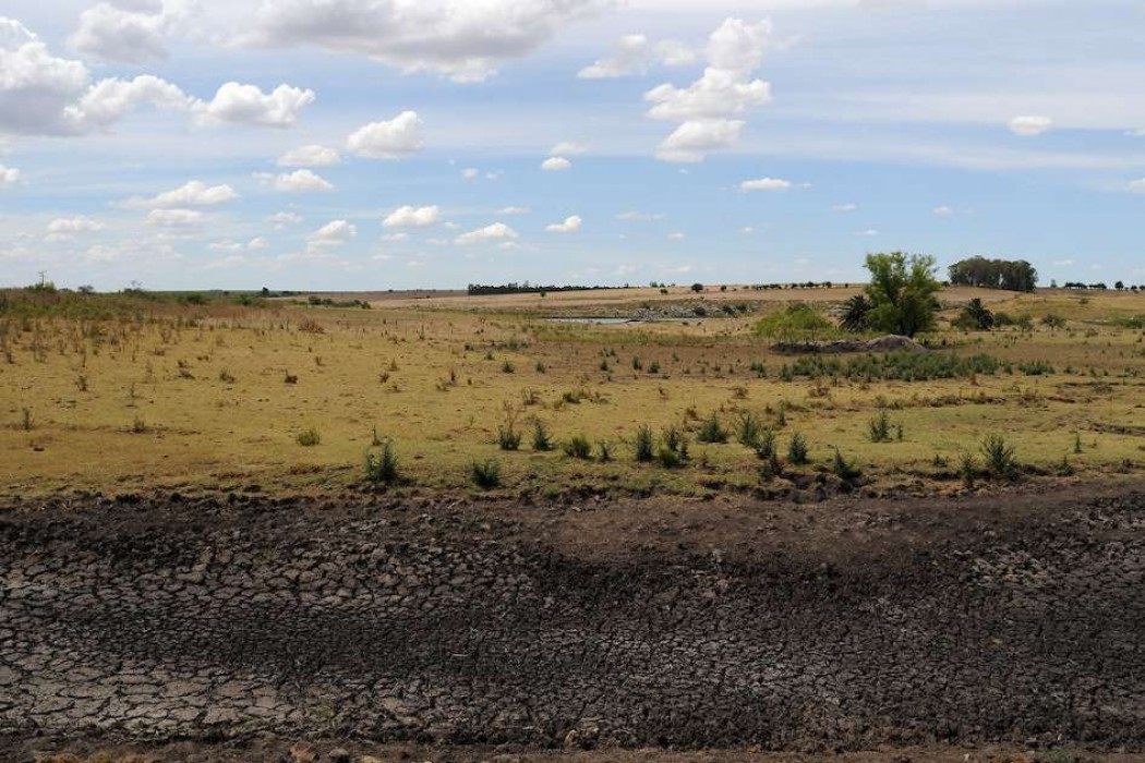 Gobierno amplía el área declarada bajo emergencia agropecuaria — 180.com.uy | Del Sol 99.5 en el Mundial Rusia 2018