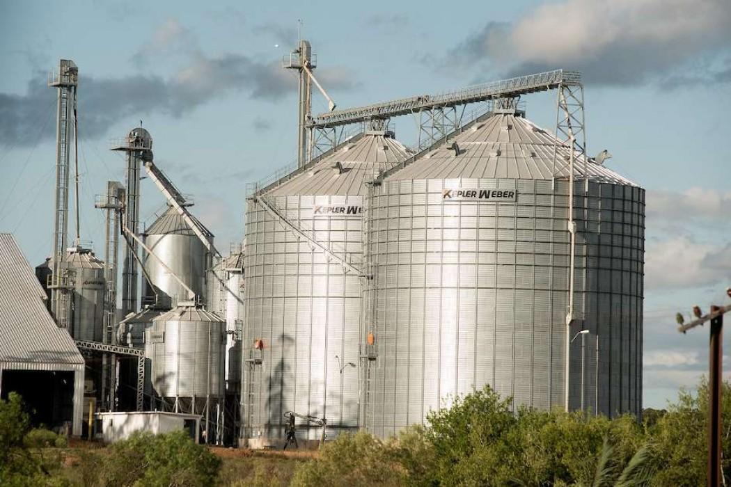 El arroz destaca en un contexto de fuerte caída de las exportaciones — 180.com.uy | Del Sol 99.5 en el la Copa América 2019