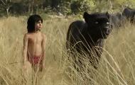 Portal 180 - Favreau revive El libro de la selva, ahora con personajes femeninos