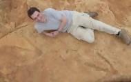 Portal 180 - Descubren en África huellas de un nuevo y gigantesco dinosaurio