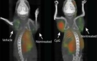 Portal 180 - Experimento en cáncer ilusiona por innovación y resultados