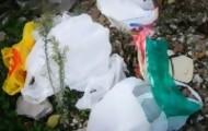 Portal 180 - Senado aprobaría ley de bolsas plásticas