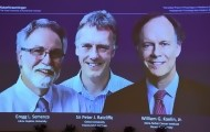 Portal 180 - Nobel de Medicina para trío que investigó cómo se adaptan las células al oxigeno