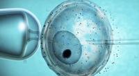 Portal 180 - Reproducción asistida de alta complejidad llegó a meseta de casos anuales