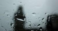 Portal 180 - Invierno con más temperatura y más lluvias