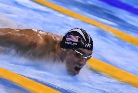 Portal 180 - Michael Phelps competirá contra un tiburón real