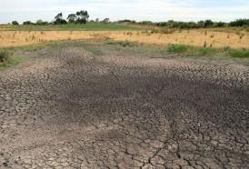 Portal 180 - Se espera muy poca lluvia y La Niña continuará en marzo