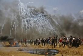 """Portal 180 - Palestinos piden frenar """"la horrible masacre en Gaza"""""""