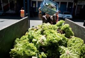 Portal 180 - Considerable aumento de la canasta de frutas y hortalizas