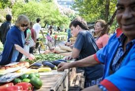 Portal 180 - Julio marcó una suba promedio de 20% anual en las frutas y verduras