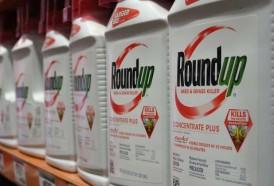 Portal 180 - Corte de EEUU confirma condena contra Monsanto por efectos del glifosato