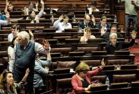 Portal 180 - Parlamento aprobó proyecto de ley de promoción de agroecología