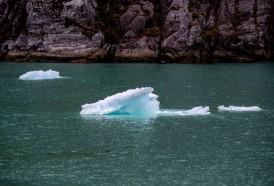 Portal 180 - Las catástrofes climáticas, entre las primeras preocupaciones en Davos