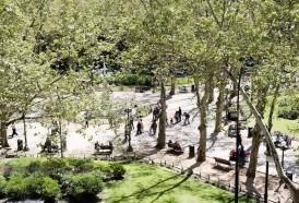 Portal 180 - Intendencia dejará de usar glifosato en las áreas verdes de Montevideo