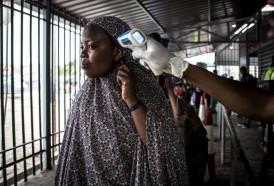 """Portal 180 - La OMS declaró el ébola """"emergencia"""" sanitaria mundial"""