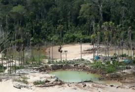 Portal 180 - Gobernadores de la Amazonía brasileña critican política de Bolsonaro