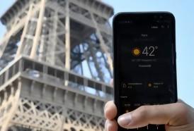 Portal 180 - 2019 fue el segundo año más cálido jamás registrado en el mundo